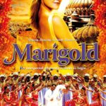Marigold Full Movie Download Free DVDRip