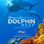 Dolphin Reef Movie Free Download 720p